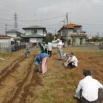 農業体験の写真(その1)